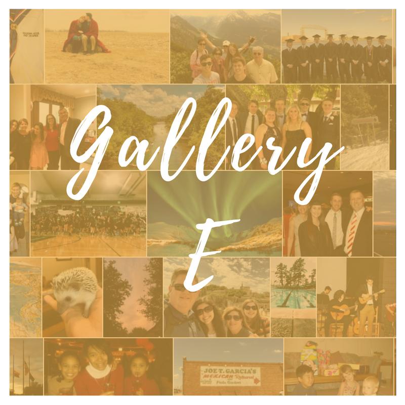 Gallery E