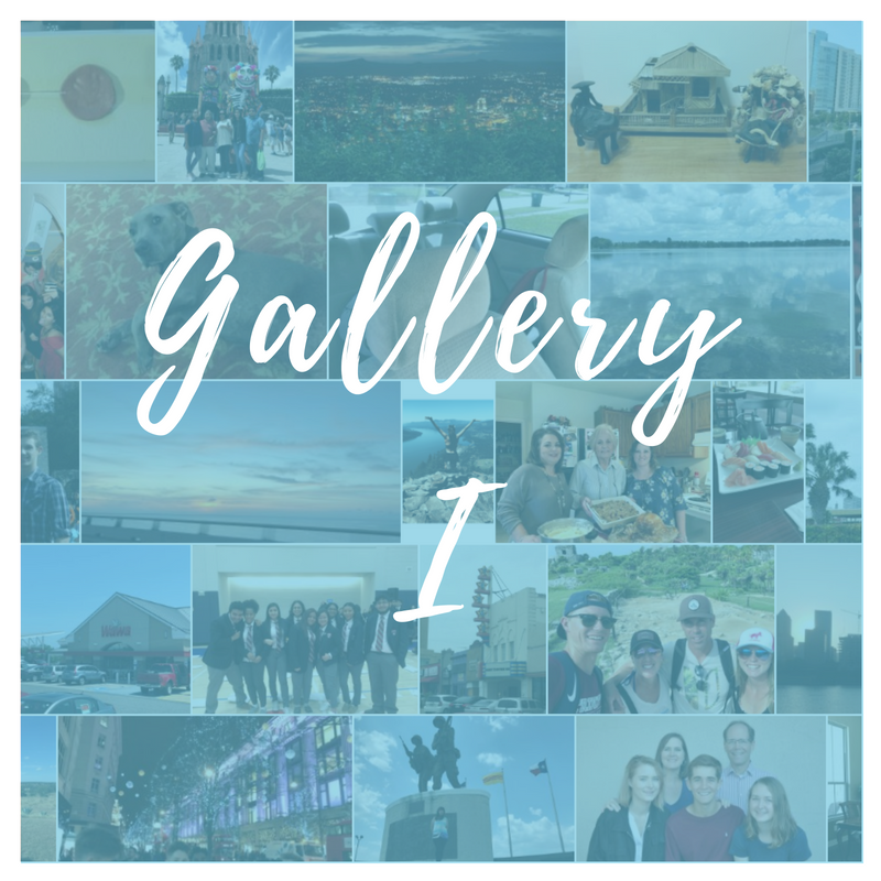 Gallery I